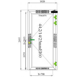 Drzwi Aluminiowe PPOŻ 1020 x 2095