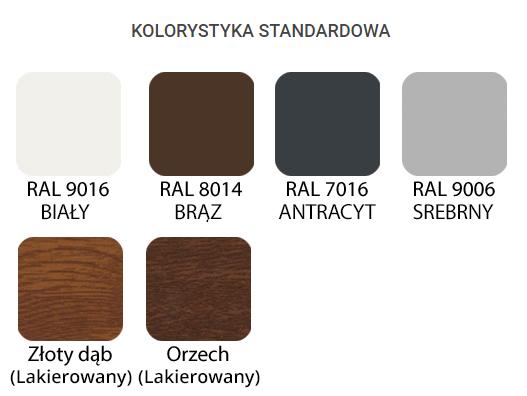 kolorystyka standard.png
